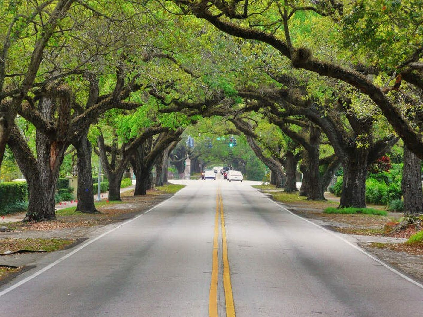 Coral Way Near The Henry Apartments in Coral Gables, FL.