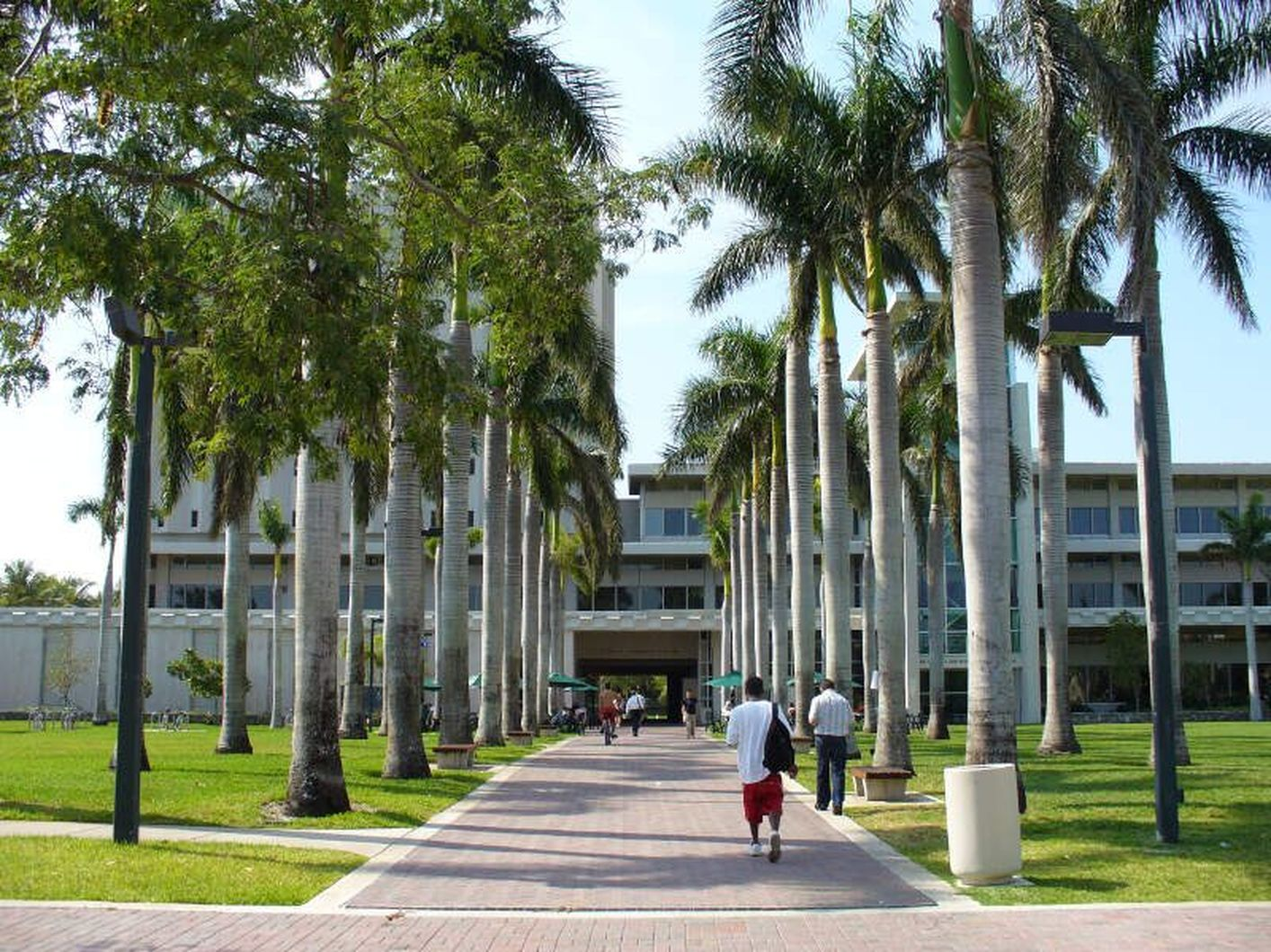 University of Miami Near The Henry Apartments in Coral Gables, FL.